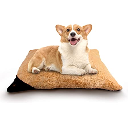 Amazon Com All For Paws Dog Pillow Bed Ultra Soft Pet Dog Bed Comfortable Cushion Bed Plush Dog Pillow Machine Wash Dryer Friendly Brown L Pet Supplies