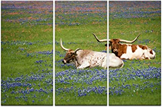 Welmeco 3 Pieces Animals Wall Decor Texas Longhorn in Bluebonnets Field Photograph Canvas Prints Nature Scenery Picture Artwork for Home Office Living Room Decoration (01 Longhorn)