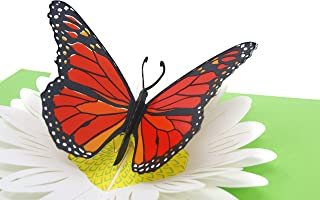 PopLife Orange Monarch Butterfly on Daisy 3D Pop Up Mother's Day Card - Anniversary Pop Up for Mom, Happy Birthday - Cute Gift for Her - Folds Flat - for Sister, for Daughter, for Wife, for Grandma