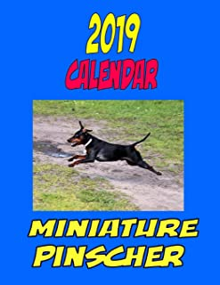 2019 Calendar Miniature Pinscher: Dog weekly calendar, personal contacts list, password log, notes and to do list.