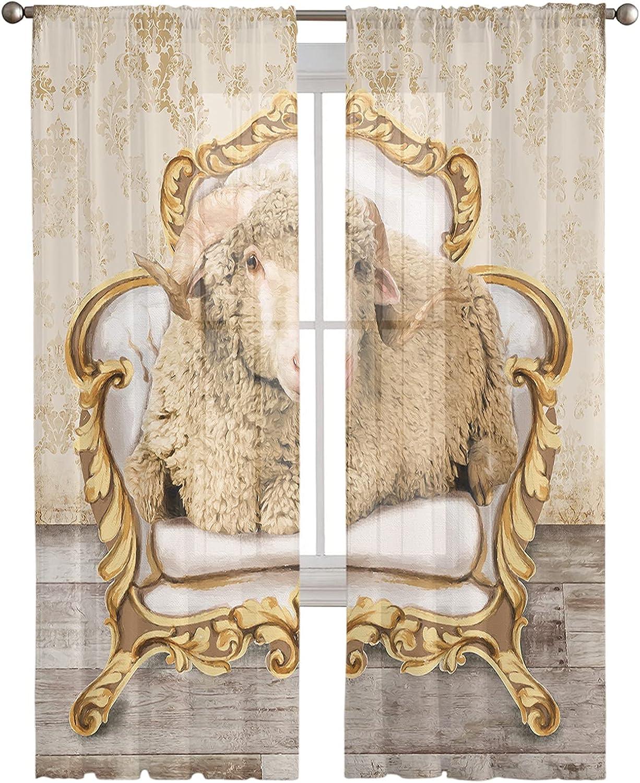 Semi Award Sheer Ranking TOP14 Curtains Half Transparent Sitting a on Sheep Privacy