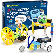 Giggleway Electric Motor Robotic Science Kits, DIY STEM Toys for kids, Building Science..