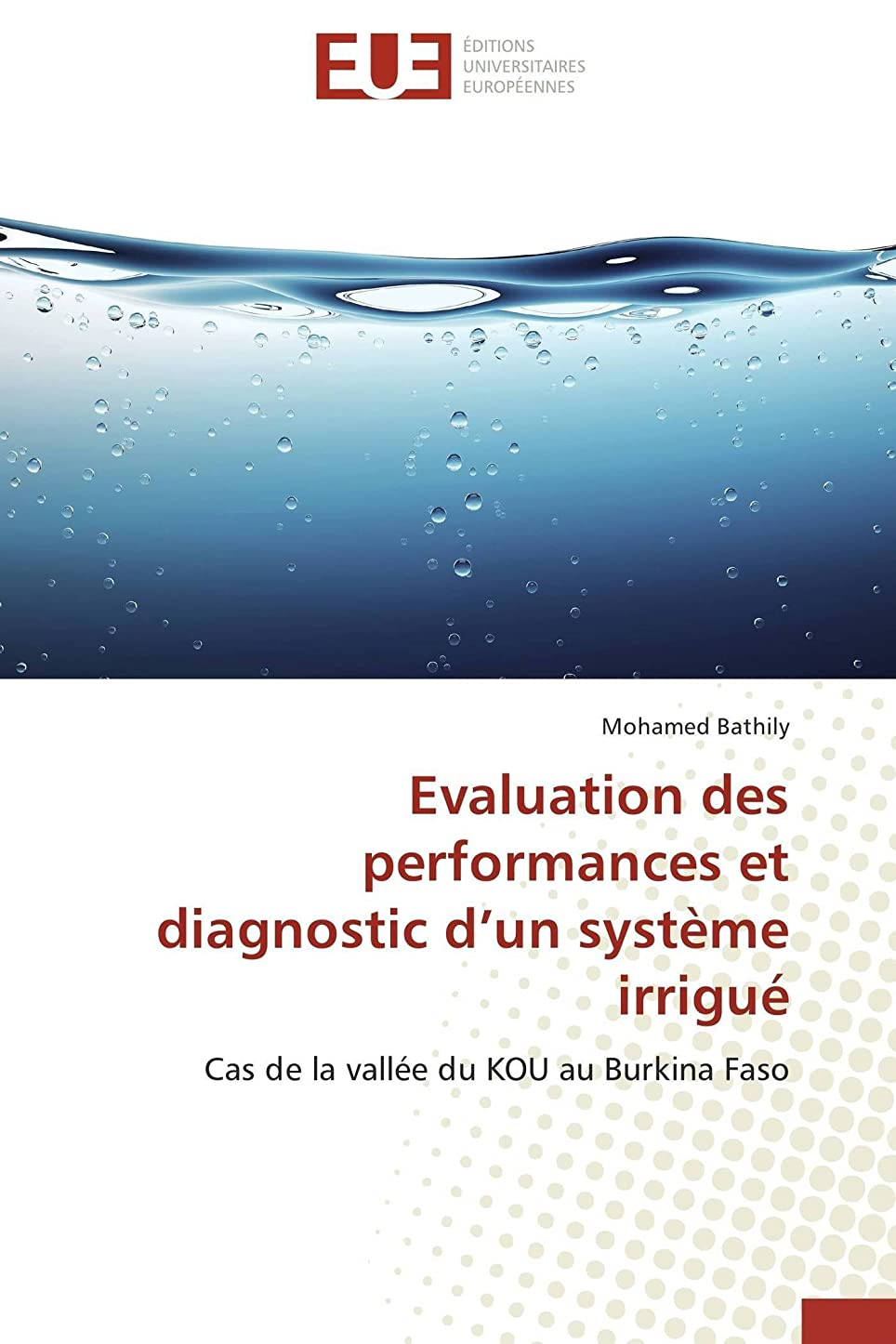 ビバ滅びる高速道路Evaluation Des Performances Et Diagnostic D Un Système Irrigué (Omn.Univ.Europ.)