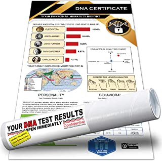 Giftable Invisibles Funcestry Hilarious DNA Results with Beauty/Movie Ancestry. Includes Genetic Make-up, Migration Map, Physical, Behavioral & More. Packaged in mailing Tube. (4 Pack)