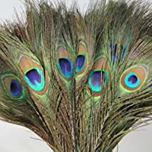 SMARTBUYER-Peacock Mor Pankh Feather Tails In Full Length (PACK OF 10).