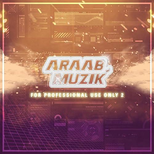 for professional use only araabmuzik