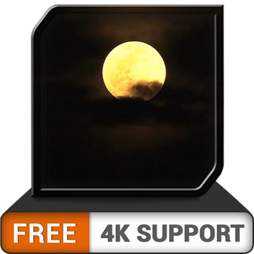 noite romântica da lua HD - desfrute de sonhos românticos ao luar com seu parceiro na sua TV HDR 4K, TV 8K e dispositivos de incêndio como papel de parede e tema para mediação e paz e férias de Natal