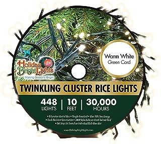 rice lights garland