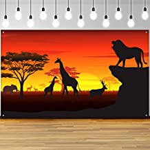 South African Themed Party Decorations from m.media-amazon.com