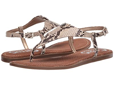 Circus by Sam Edelman Carolina (Roccia Savannah Snake) Women
