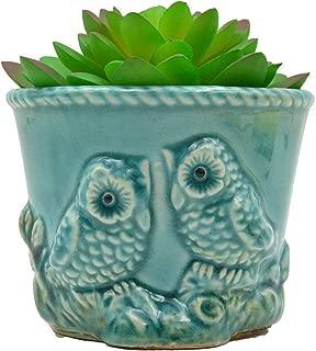 Ceramic Owl Plant Pot/Bonsai Pot/Flower Pot/Succulent Planter Carving in Relief(Blue)