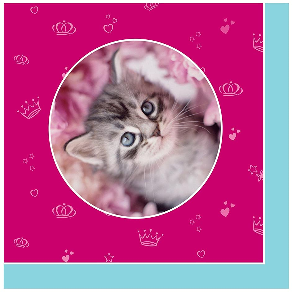 BirthdayExpress Rachael Hale Glamour Cats Party Supplies - Lunch Napkins (20)