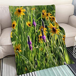 BEICICI Breathable Flannel Warm Weighted Blanket Prairie Wildflowers in Iowa Black Eyed Susans and Purple Prairie Clover Living Room/Bedroom Warm Blanket