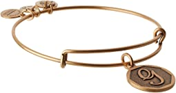 Alex and Ani Initial G Charm Bangle