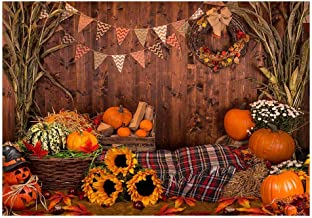 Best fall harvest backdrops Reviews
