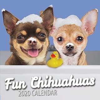 Best chihuahua desk calendar Reviews