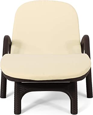 Christopher Knight Home 313218 Chaise Lounge Set, Dark Brown + Beige
