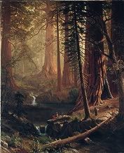 Art Print Reproduction - Giant Redwood Trees of California by Albert Bierstadt