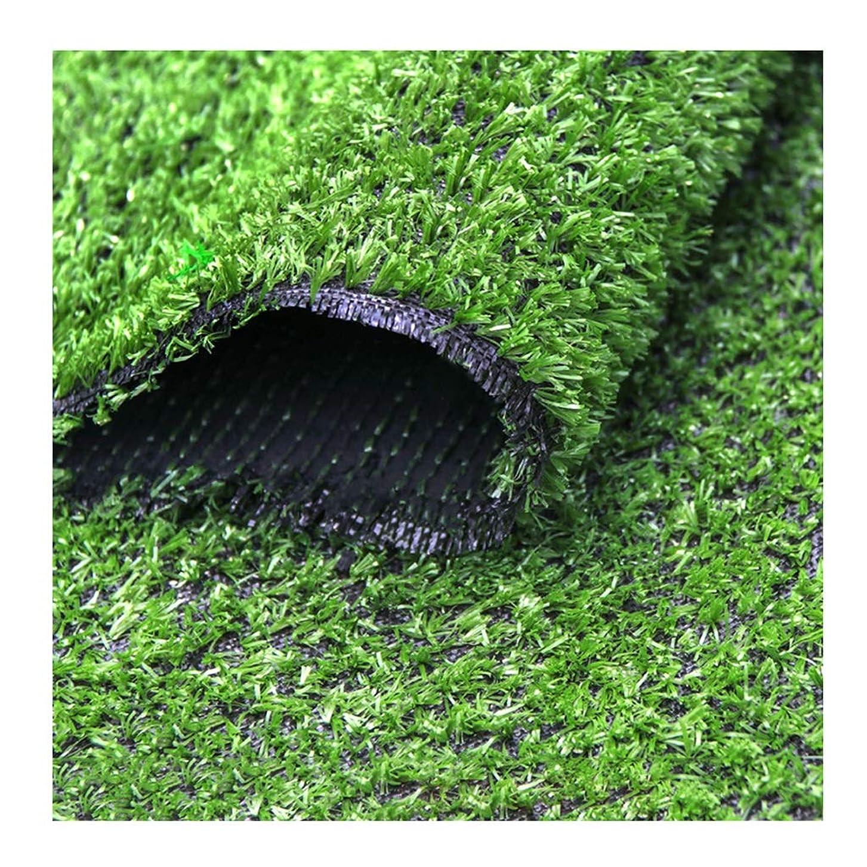 つぼみ皮肉誘発するXEWNEG 優れた人工的な草の芝生の10mmの山の高さ、バルコニーの屋外の装飾のために適した偽ののどの草 (Size : 2x3M)