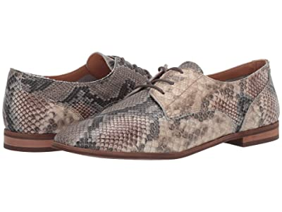 FRYE AND CO. Piper Oxford (Taupe Snake Embossed Leather) Women