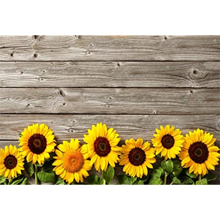10x15ft Sunflowers Under Blue Sky Photography Backdrop for Children Photo Shooting Props Room Mural RQ016