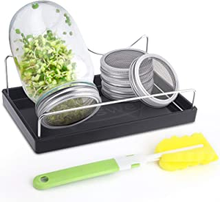 Haswe Seed Sprouting Jar Kit - 4 Stainless Steel Screen Sprout Lids,1 Melamine Tray, Stand and Canning Brush for Wide Mout...