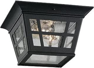 Sea Gull Lighting 78131-12 Herrington Two-Light Outdoor Ceiling Flush Mount Hanging Modern Light Fixture, Black Finish