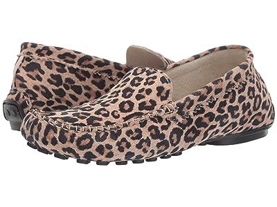 French Sole Stella (Leopard Suede) Women