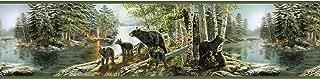Chesapeake TLL01531B Salvador Green Bear Necessities Border Wallpaper,