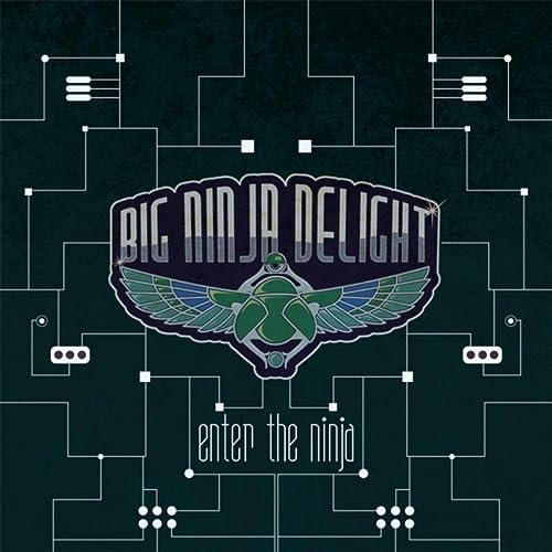 Enter the Ninja by Big Ninja Delight on Amazon Music ...