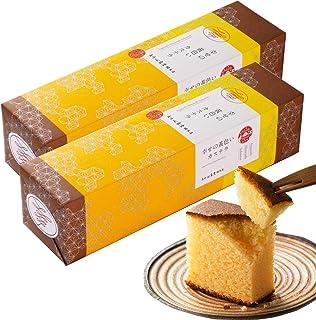 長崎心泉堂 長崎カステラ 幸せの黄色いカステラ 10切カットタイプ 310g×2本セット