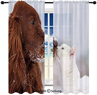 Soundproof Blackout Curtain Sheer Rod ket Drape for Dining Room,Irish Setter and Cute White Cat in Snow Playing Together Hip Love Adornment Decorative 72