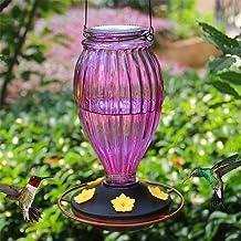 Juegoal Glass Hummingbird Feeders for Outdoors - 37 oz Wild Bird Feeder 5 Feeding Ports, Bud Shaped Metal Handle Hanging f...