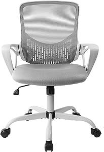 SMUGDESK Ergonomic Office Lumbar Support Mesh Computer Desk Task Chair with Armrests, Gray
