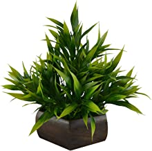 Planters Artificial Bamboo Leaves Plant (Size 7.5 Inchs/ 20 Cms) with Wood Hexagun Pot