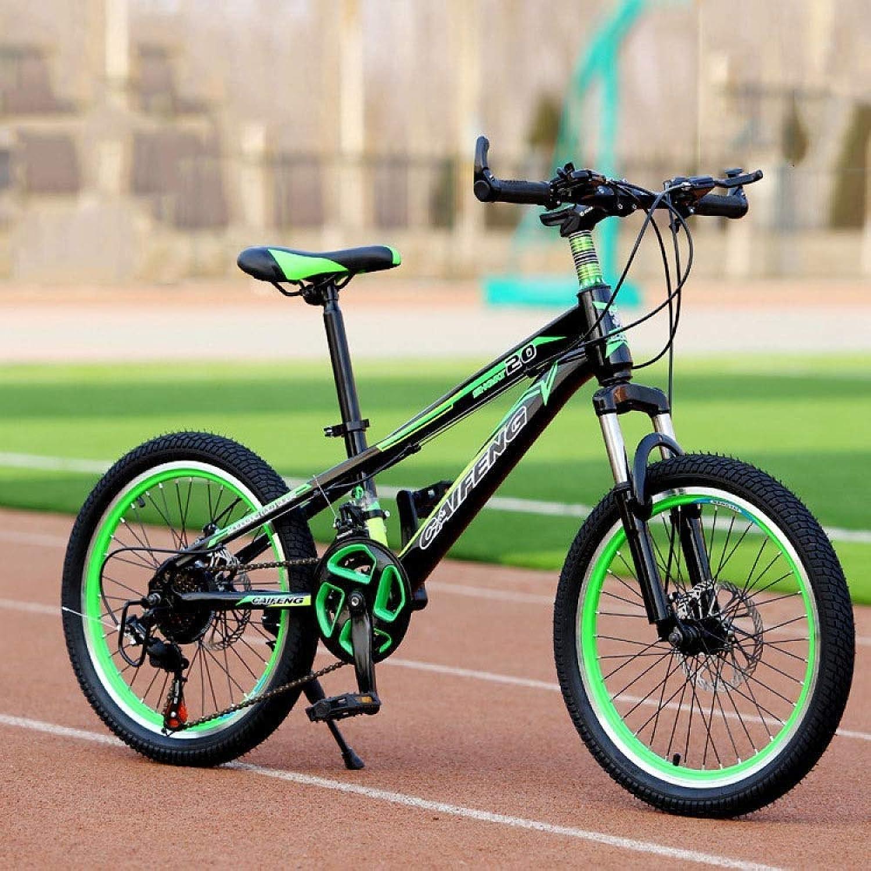 XHLJ Kinder Mountainbike, Variable Geschwindigkeit Erwachsene Mountainbike Fahrrad, Doppelscheibenbremse, Stodmpfer Fahrrad (Farbe   C, gre   24 inch)