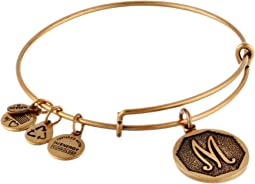 Alex and Ani - Initial M Charm Bangle