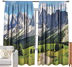 Andrea Sam Sheer Curtains Farmhouse Decor,Winding Path into Pine Tree Forest Meadows and Mountain Scenery Print,Green White Blue W120 x L96 inch,Machine Washable