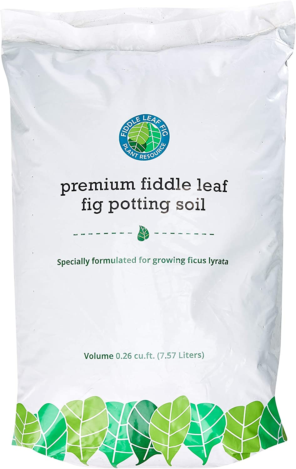 Premium Fiddle Leaf Fig Tree Potting - P Indoor for Soil Sale SALE% OFF Perfect Be super welcome
