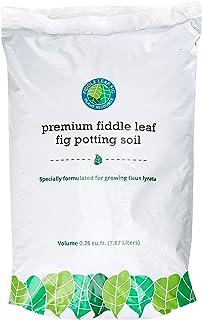 Premium Fiddle Leaf Fig Tree Potting Soil - Perfect for Indoor Plants