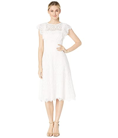 Tahari by ASL Flutter Sleeve Lace Dress (Ivory) Women