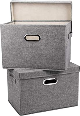 MAOGONG Storage Bins with Lids, Storage Basket with Lids, Collapsible Fabric Bins, Collapsible Storage Containers with Lid, Storage Cubes with Handles for Home Closet Office Nursery(2 Pack)