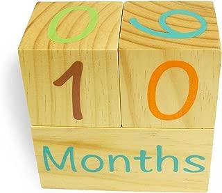 Emmzoe Wooden Photo Blocks Baby Growth Development Wood Portrait Prop (Days, Weeks, Months, Years)