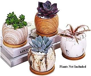 Best 4 succulent pots Reviews