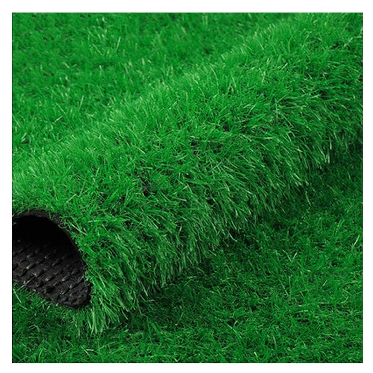 赤道水を飲むスケートYNGJUEN 30mmパイル高合成芝生、人工芝、高密度ホリデー芝生(サイズ:2m×1m) (Size : 2x4m)