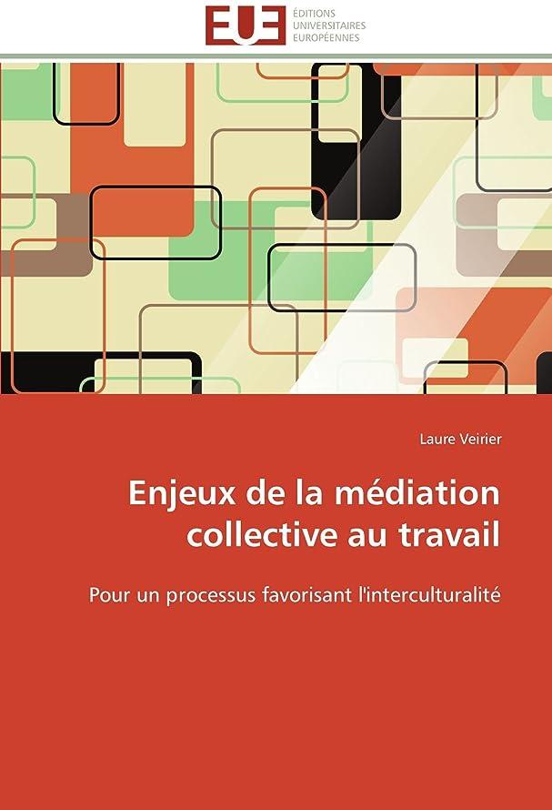 異なる親密な最終Enjeux de la Médiation Collective Au Travail (Omn.Univ.Europ.)