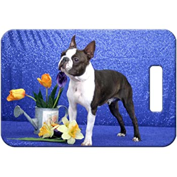 Canine Designs Set of 2 French Bulldog Luggage Tags