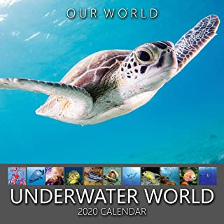 Our World: Underwater World 2020 Marine Nature Wall Calendar