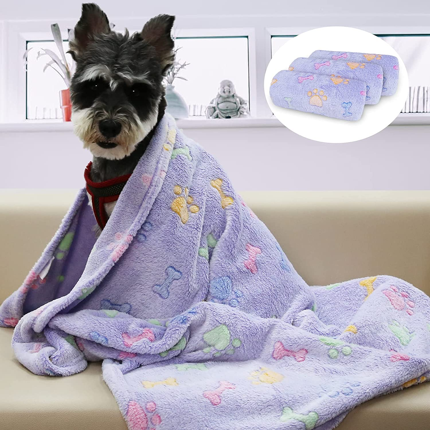 Patas Lague Pet Dog Blanket, 3 Pieces Super Soft Flannel Fleece Puppy Throw Blanket with Cute Print Design for Dog and Cat, Machine Washable (Violet Bone,20x30 Inches) : Pet Supplies