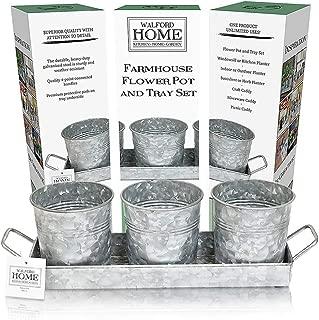 Best herb windowsill planter Reviews